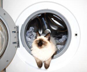 How to Wash Socks